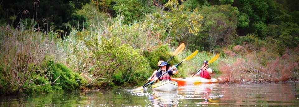 Woli Creek Paddling